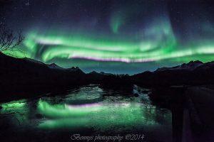 Aurora twin